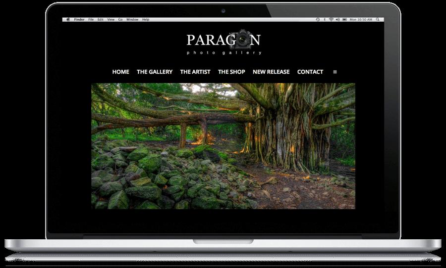 paragon laptop art