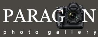 paragon logo ligh grey
