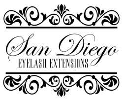 sdee_logo_new_250x205