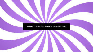 Colors Make Lavender