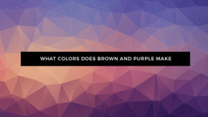 What Color Does Brown and Purple Make