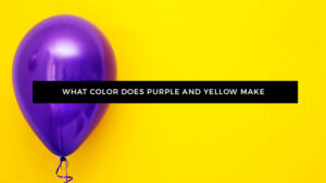What Color Does Purple and Yellow Make