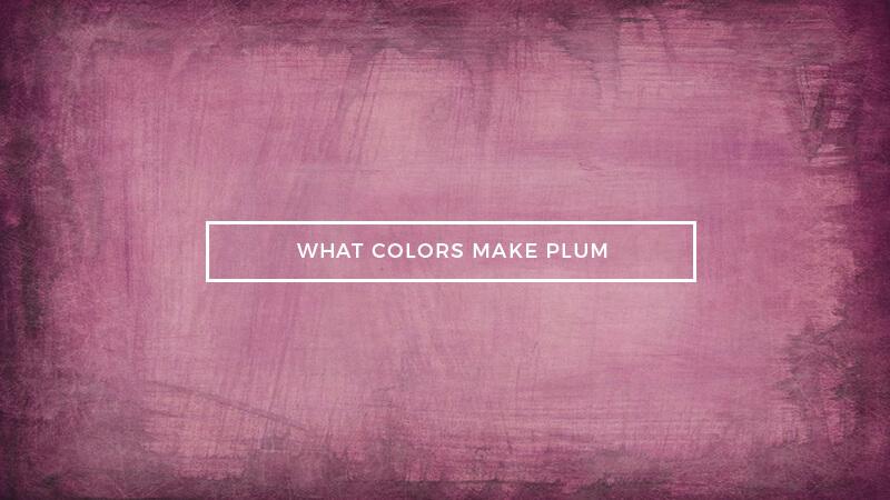 What Colors Make Plum Color