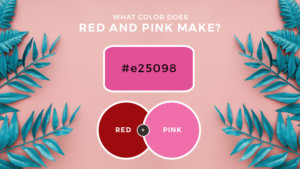 What Color Does Red and Pink Make