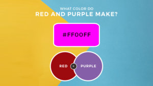 What Color Does Red and Purple Make