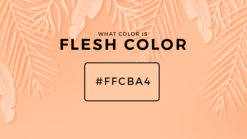 What colors make flesh color