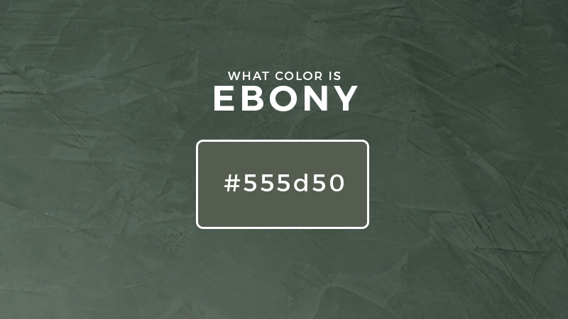 what color is ebony