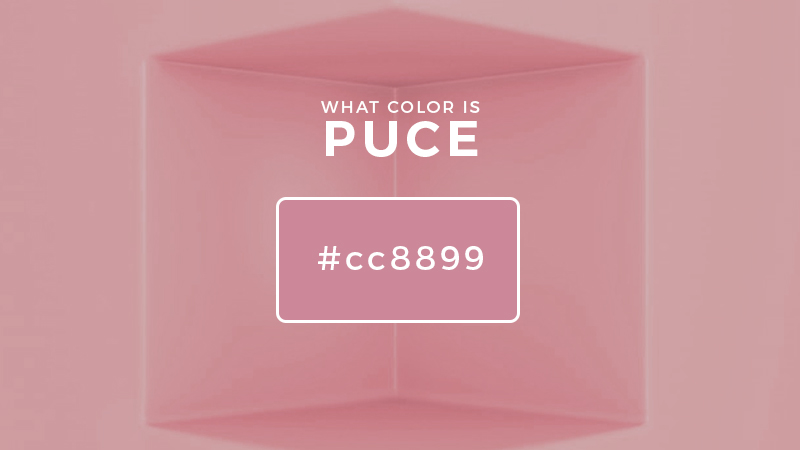 what color is puce
